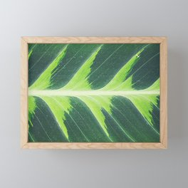 Leaf green Framed Mini Art Print