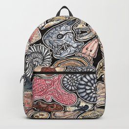 Fossils for history, dinosaur and archaeology lovers Backpack