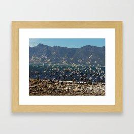 """Airborne (i)"" by ICA PAVON Framed Art Print"