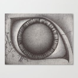 The Eye. Canvas Print