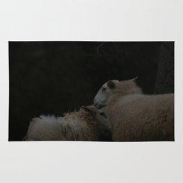 sheep Rug