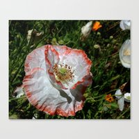 degas Canvas Prints featuring Degas' poppy by Bee in Eden