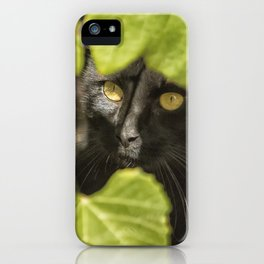 Brita's Cat iPhone Case