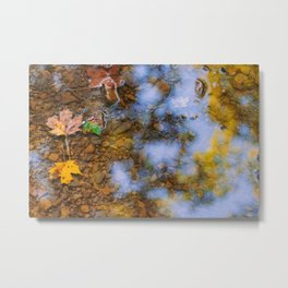 Harbinger of Fall Metal Print