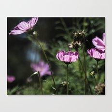 Glowing Petals Canvas Print
