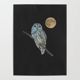 Owl, See the Moon Poster