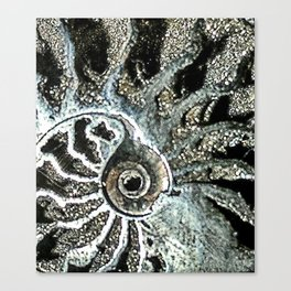 Pyrite after Ammonite Canvas Print