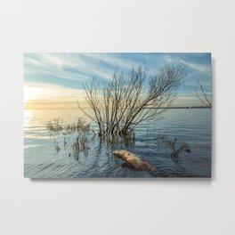 Lake II Metal Print