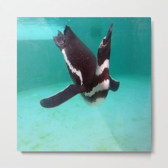 Penguin Swim Metal Print