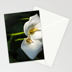 Close-up of Giant White Calla Lily Stationery Cards