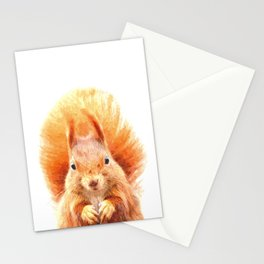 Squirrel Portrait Stationery Cards