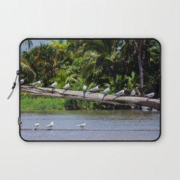 Royal terns - Costa Rica Laptop Sleeve