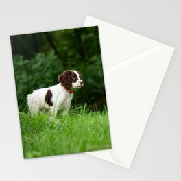 My Theodore ~The English Springer Spaniel~ 2 Stationery Cards