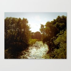 Inclination to Roam Canvas Print