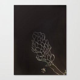 Black and White Alpinia purpurata – Red Ginger Flower, Bogota, Colombia Canvas Print