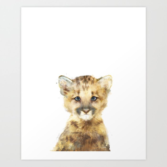 Little Mountain Lion Art Print