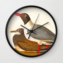 Vintage Scientific Bird & Botanical Floral Illustration Wall Clock