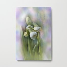 the beauty of a summerday -57- Metal Print