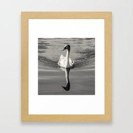 Spiegel Framed Art Print
