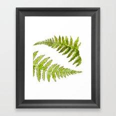 Etched Into Nature No.1 Forest Ferns Framed Art Print