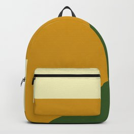 Simple and Modern Backpack