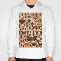 bugs Hoodies featuring Love Bugs by Angela Rizza