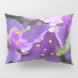 Tradescantia named Blue Stone Pillow Sham