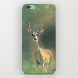 Leader of the Herd - Deer -Buck iPhone Skin