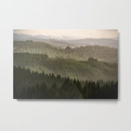 Pacific Coast Mountain Forest - 124/365 Metal Print