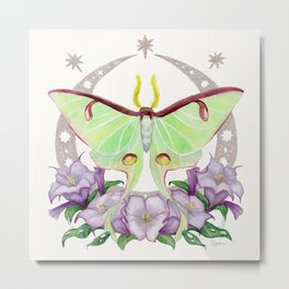 Night Luna Moth with Datura Flowers on Ivory Metal Print