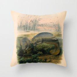 Vintage Scientific illustration, c. 1880 (Manatees) Throw Pillow