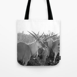 Herd of Eland stand in tall grass in African savanna Tote Bag
