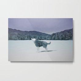 Lonewolf Metal Print