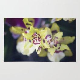 Longwood Gardens Orchid Extravaganza 74 Rug