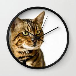 Ben the Bengal Cat Wall Clock