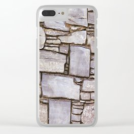 Rock Wall Clear iPhone Case