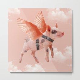 Little Piggy can Fly II Metal Print