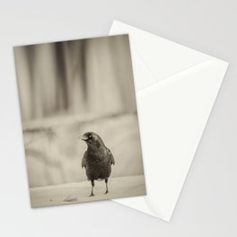 Betsy's Crow In The Snow Stationery Cards