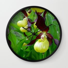 Rhode Island Wild Orchid Black and Yellow Lady Slippers Wall Clock