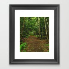 Pathfinder I Framed Art Print