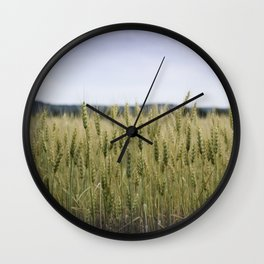Grain Almost Ready For Harvest Wall Clock