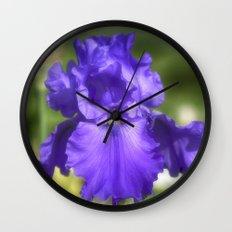 Purple Bearded Iris Wall Clock