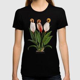 Anthurium scherzerianum old plate T-shirt