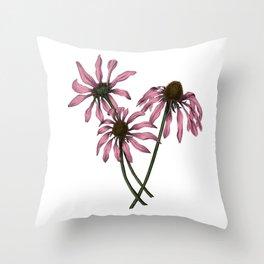 Botanical Purple Coneflower Drawing Throw Pillow
