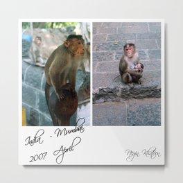 Monkeys Jungle - April 2007 Metal Print