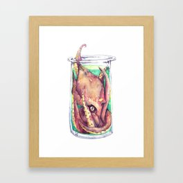Enfrascado Framed Art Print