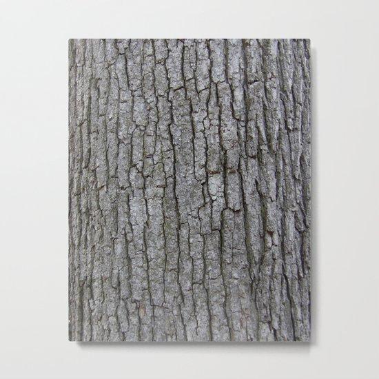 white oak bark Metal Print