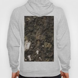 Living on Concrete Hoody