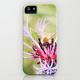 Spring Time Bumble Bee on a Purple Flower iPhone Case