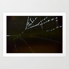 Watery Web Art Print